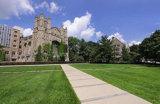 University Of Michigan by snehit