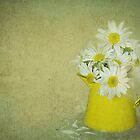 Broken Daisy by Maria Dryfhout
