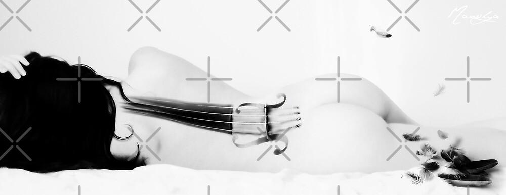 Cello by Manolya  F.