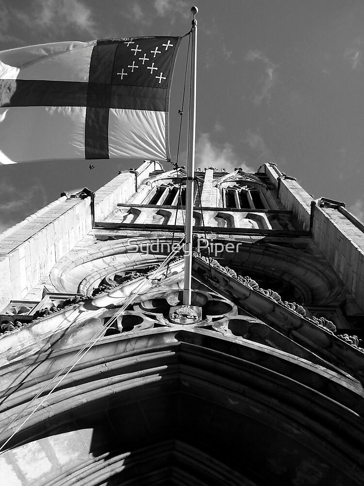 Windy City by Sydney Piper