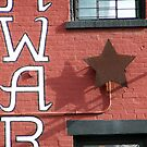 Day Star by Sydney Piper