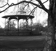 The Bandstand, Greenwich Royal Park by Andrew  Bailey
