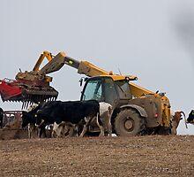 JCB farm handler by Jon Lees