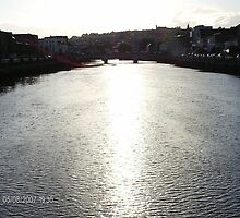 river lee,cork city,ireland by phoenix68