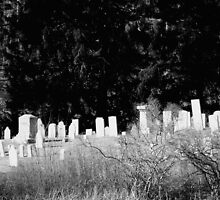 BW Cemetery by Tricia Stucenski