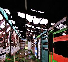 Old Barn Stalls...roof collapsed from snow, Salem, Ore. by trueblvr
