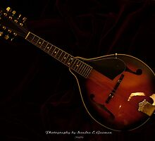 Mandolin 2 by Sandra Guzman