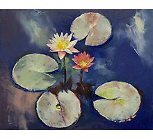 Water Lily Painting Photographic Print