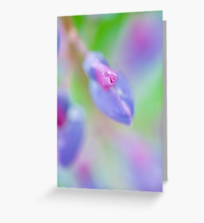 Impressionist Lupin Greeting Card