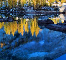 Blue and Yellow by Inge Johnsson