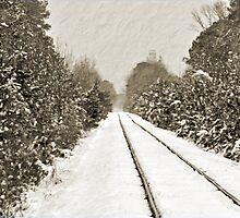 Snowy Tracks by Jeff Ore