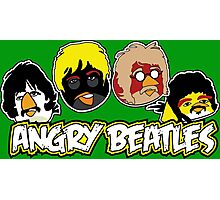 Angry Beatles - Angry Birds/ Beatles Parody Photographic Print
