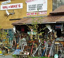 Wal-Mike's by Sally Winter