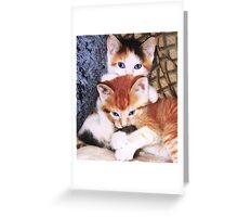 Gotcher Tail! Greeting Card