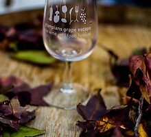 Halls Gap Food and Wine Festival by forgantly