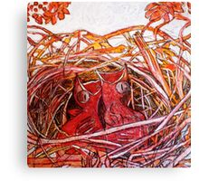 Red Birds Waiting Canvas Print