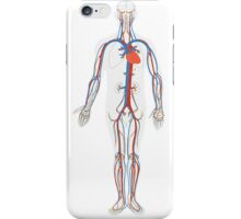 Human Body Anatomy iPhone Case/Skin