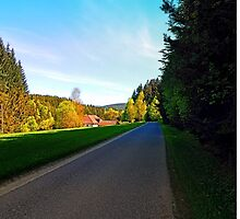Country road on a spring afternoon | landscape photography by Patrick Jobst