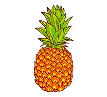 Pineapple. Hand drawn vector. Photographic Print