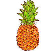 Pineapple. Hand drawn vector. by Olga Matskevich