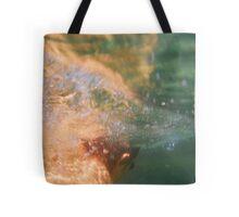 Ocean Pool # 3 Tote Bag