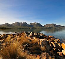 Tawny Morning, Freycinet by bevanimage