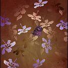 batik butterfly by Ann Nightingale