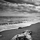 Lonely Rock by sunnykalsi