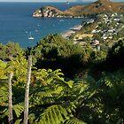 Hahei Beach 2, Coromandel Peninisula, New Zealand by Sharon McDowall