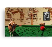 Cows rules! Canvas Print