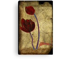2 tulips Canvas Print
