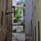 Granada 1 by Annique Albericci