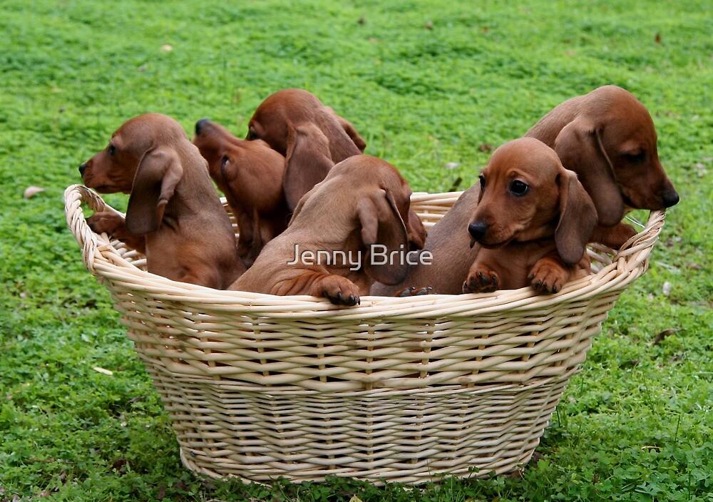 Basket Full Of Mischief by Jenny Brice