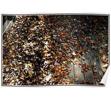 Feel the Rustle of Leaves, Dead Leaves on a Deck Poster