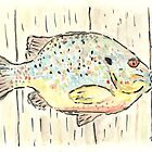 Pumpkinseed Bluegill by Matt  Gaudian