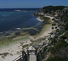 Stair Master - Rottnest Island, Western Australia. by Heather Linfoot