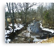 Swan Pond Brook Canvas Print