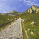 Pathway Through The Mournes by Les Sharpe