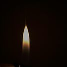 Light my Fire..  by jayant