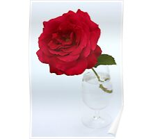 red rose in glas Poster