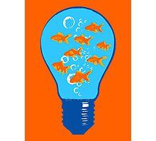Goldfish Bulb Photographic Print