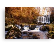 Scale Haw Falls Canvas Print
