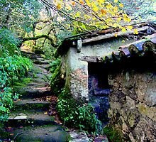 welcome to paradise 149..sintra portugal.. by Almeida Coval