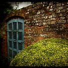 Gate, wall and hedge by Jon Harbottle