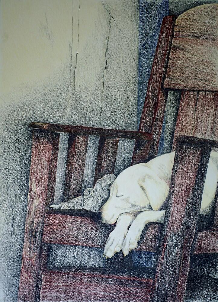 Sleeping Dog in Panama by Julie Howell