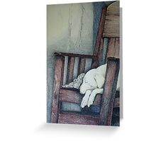 Sleeping Dog in Panama Greeting Card