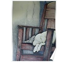 Sleeping Dog in Panama Poster