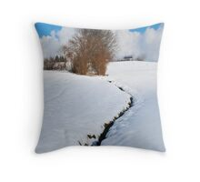 Swiss meadow stream in February Throw Pillow