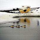 Three ducks & boat by Bluesrose