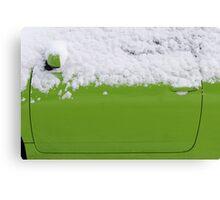 Fresh green  Canvas Print